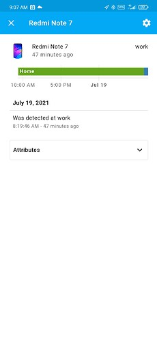 Screenshot_2021-07-19-09-07-03-074_io.homeassistant.companion.android